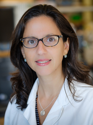 Dr. Patricia Dos Santos