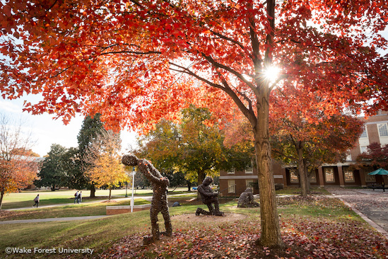 Fall color blankets the Wake Forest campus